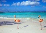 Путевки на Карибы из Балашихи, путевки на Карибские острова цены (Балашиха)