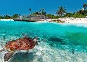 Туры на Карибские острова из Балашихи