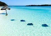 Путешествие на Карибы из Балашихи, путешествия на Карибские острова цены (Балашиха)