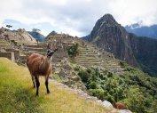 Экскурсионные туры в Перу из Балашихи